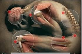 আমাদের শরীরের প্রয়োজনীয় মিনারেলগুলোর মধ্যে বেশি দরকার ক্যালসিয়াম