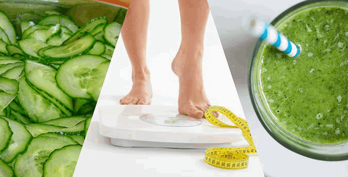 শসা খেয়ে ওজন কমান – ১ সপ্তাহে ৭ কেজি – Diet Chart